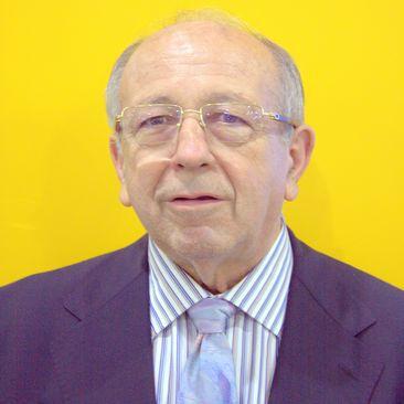 INCLAN MOLINA FRANCISCO Director