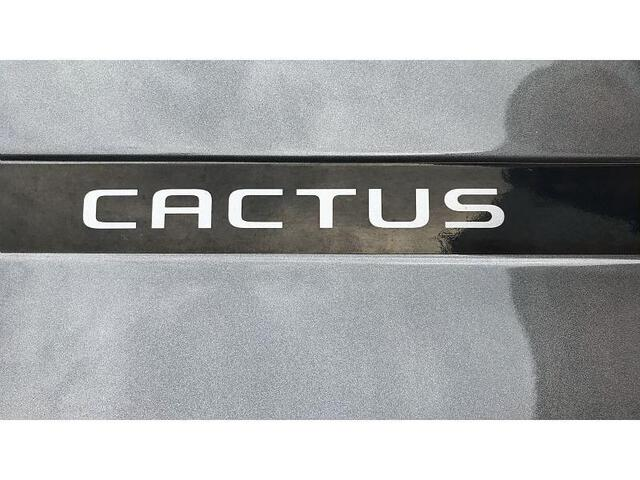 C4 CACTUS Feel Business GRIS FONCE