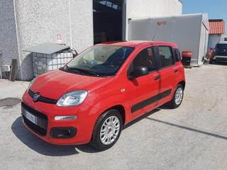 FIAT Panda 00433415_VO38013563