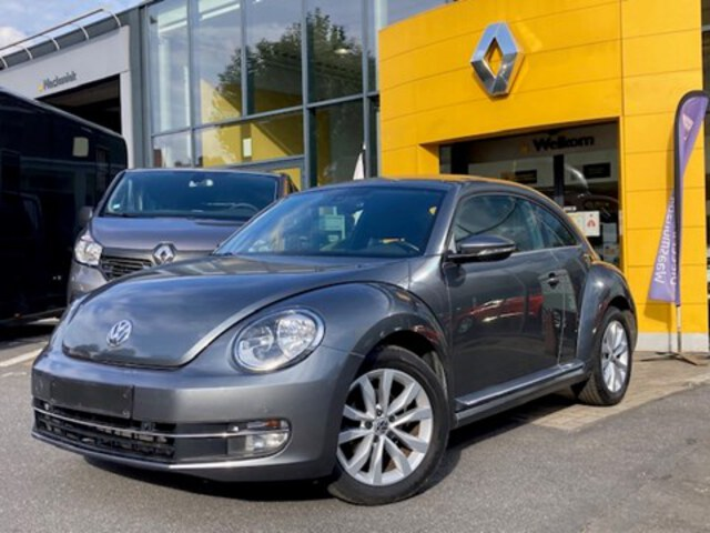 Beetle  anthracite