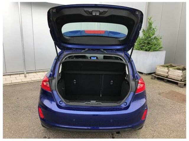 Extérieur Fiesta  bleu